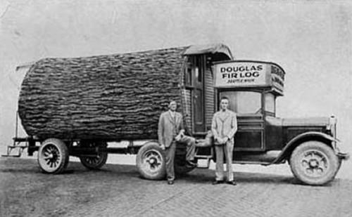 Logging in Gwinn