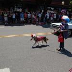 Patriotic Pooch - Marquette City 4th of July Parade 2012