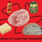ham sand anatomy_R