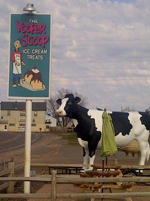 Jilbert Dairy Marquette