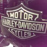Mikes Rolling Thunder Ishpeming MI 1984 Harley soft tail rebuild 02