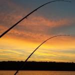 BiG ARN's Charters Trophy Salmon Fishing on Beautiful Lake Michigan