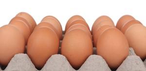 Farm Fresh Eggs - Straight from the Farm