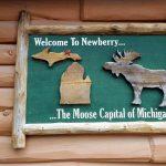 Newberry Motors is in Moose Country!