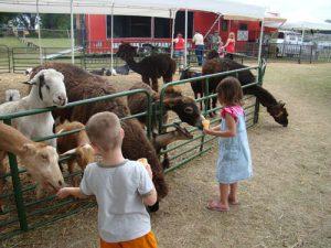 Marquette County Fair.
