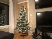 On_The_job_Christmas_Tree_120519