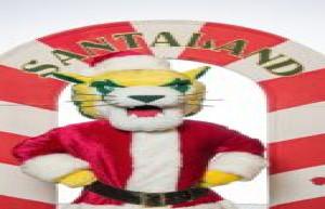 NMU's 'Lighting up the Holidays' Begins December 1, 2020