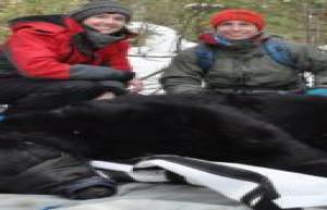 NMU Scientists Publish U.P. Bear Research December 3, 2020